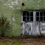 White Door with Shrub by Bill Wolff