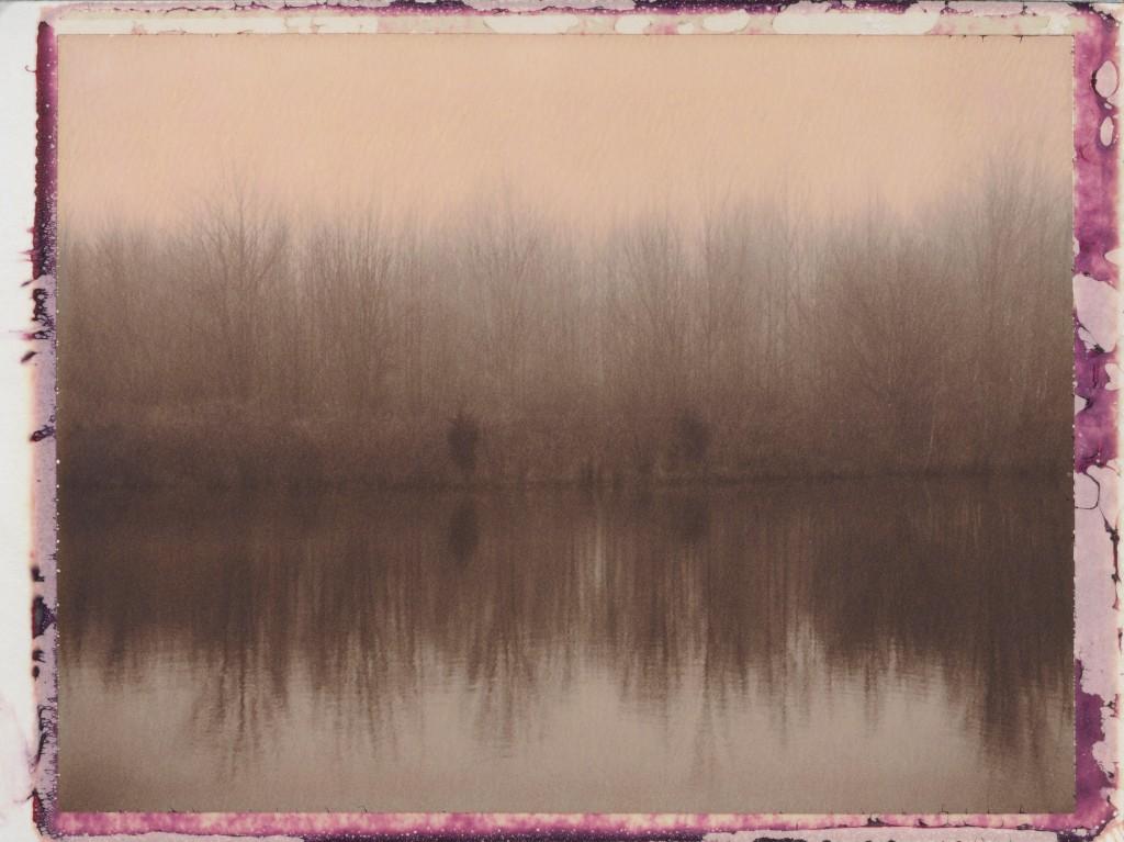Retention Pond 4 (2013)