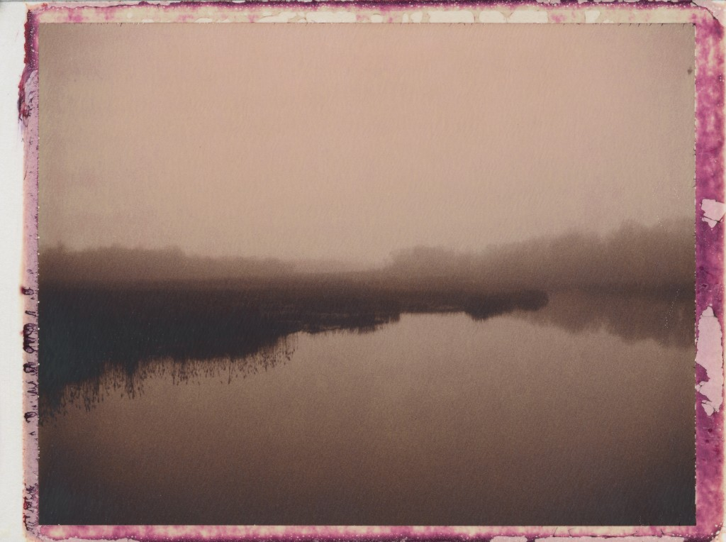 Duck Creek in Fog (2013)