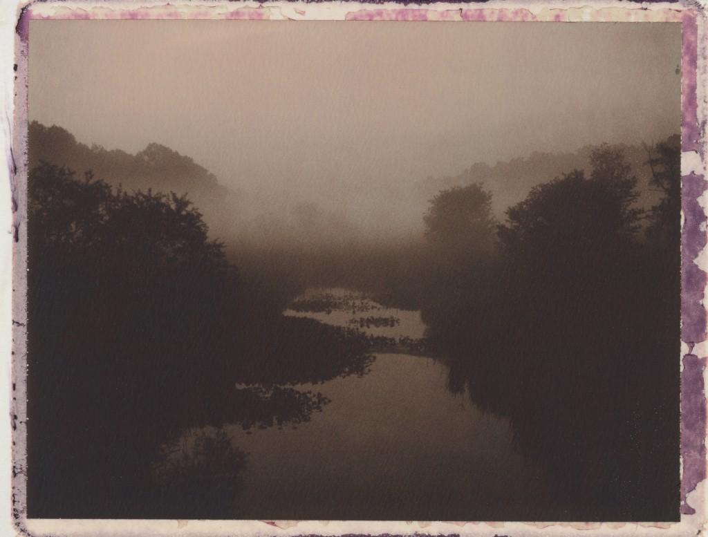 Red Lion Creek in Fog (2013)