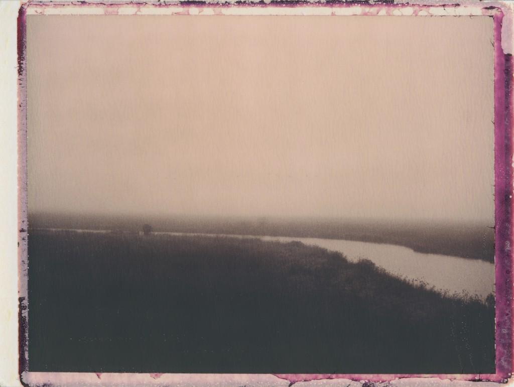 Nine Canada Geese Over Taylor's Gut through Fog (2012)